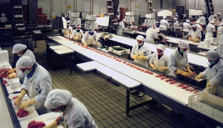 Risultati immagini per Addetto al confezionamento settore alimentare